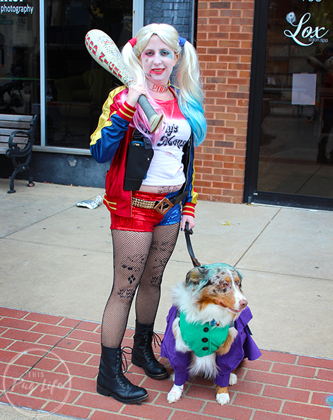 Harley Quinn cosplay with Joker dog