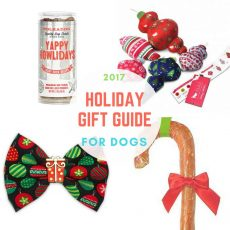 HolidayGift Guide