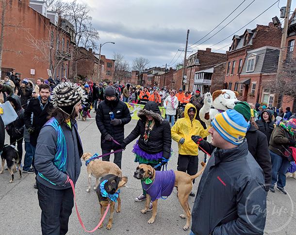 St. Louis Mardi Gras Soulard