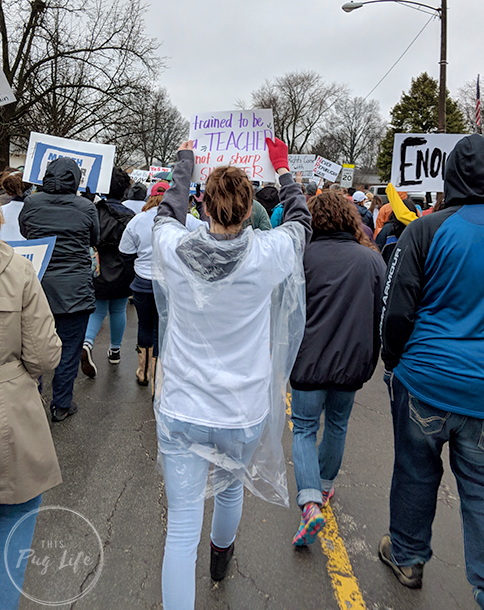 March For Our Lives O'Fallon, IL